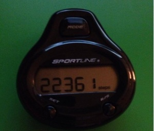 22k Pedometer Step Count